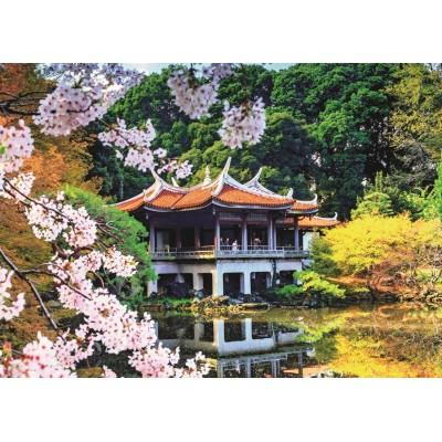 Jumbo-18361 Fleurs au Japon