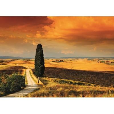 Jumbo-18362 Coucher de soleil en Toscane
