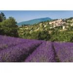 Jumbo-18397 Provence