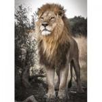 Jumbo-18523 Fierté du Lion