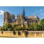 Jumbo-18528 Notre Dame de Paris
