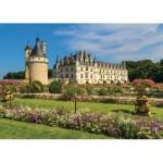 Jumbo-18555 Château de la Loire, France