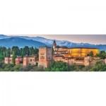 Jumbo-18574 Alhambra, Spain