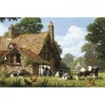 Jumbo-18579 Vaches à la Ferme