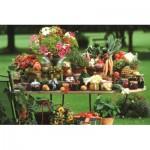 Jumbo-18582 Fruits et Légumes