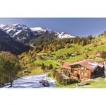 Jumbo-18587 Berner Oberland, Suisse