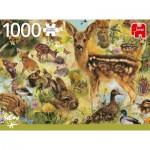 Jumbo-18819 Young Wildlife