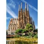 Jumbo-18835 Sagrada Familia, Barcelone