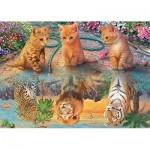 Jumbo-18850 Premium Collection - A Kitten's Dream