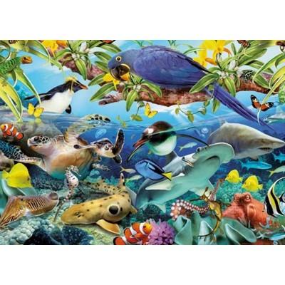 King-Puzzle-05482 Merveilles Animales