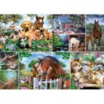 King-Puzzle-55871 Collage - Animal World