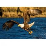 KS-Games-10106 Eagle at Hunting