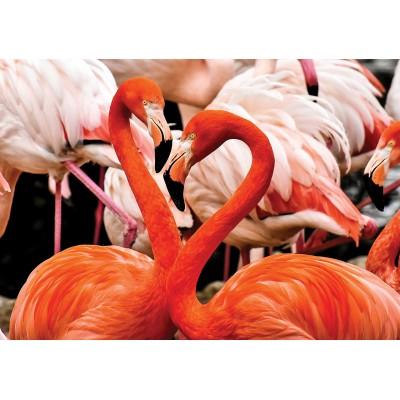 KS-Games-10107 Flamingo Lovers