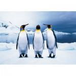 KS-Games-10110 Penguins
