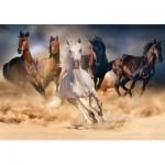 KS-Games-20514 Wild Horses