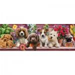 KS-Games-21009 Puppies