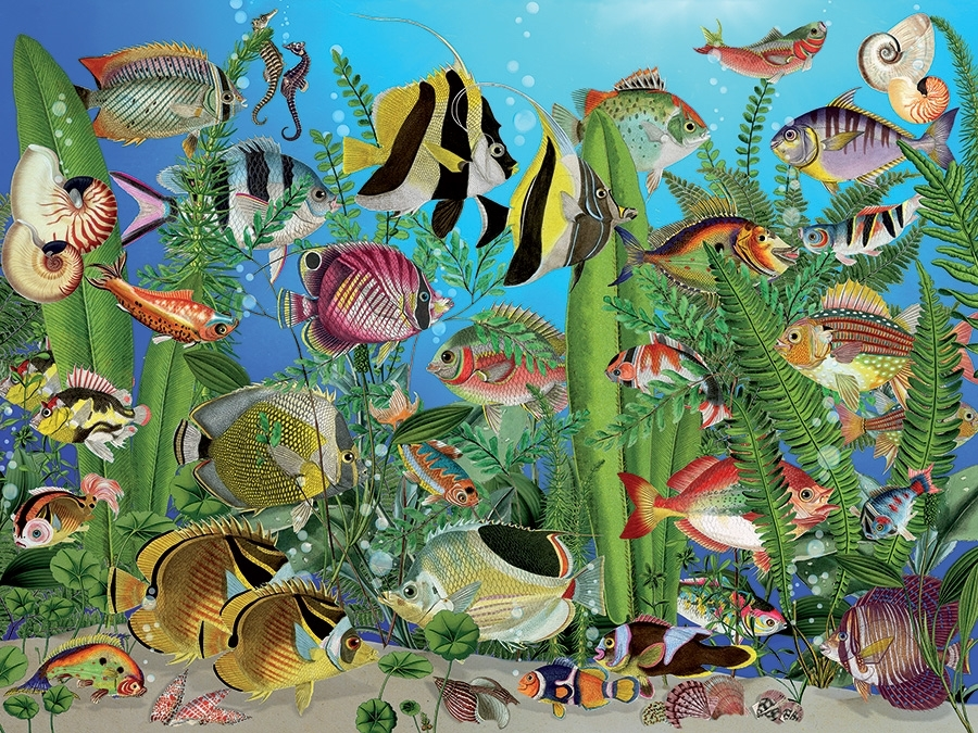 pieces-xxl-aquarium