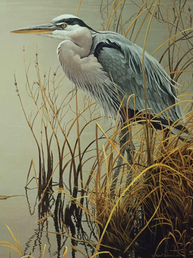 pieces-xxl-great-blue-heron