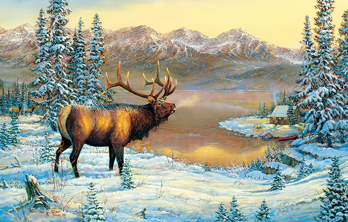 sam-timm-elk-by-the-cabin