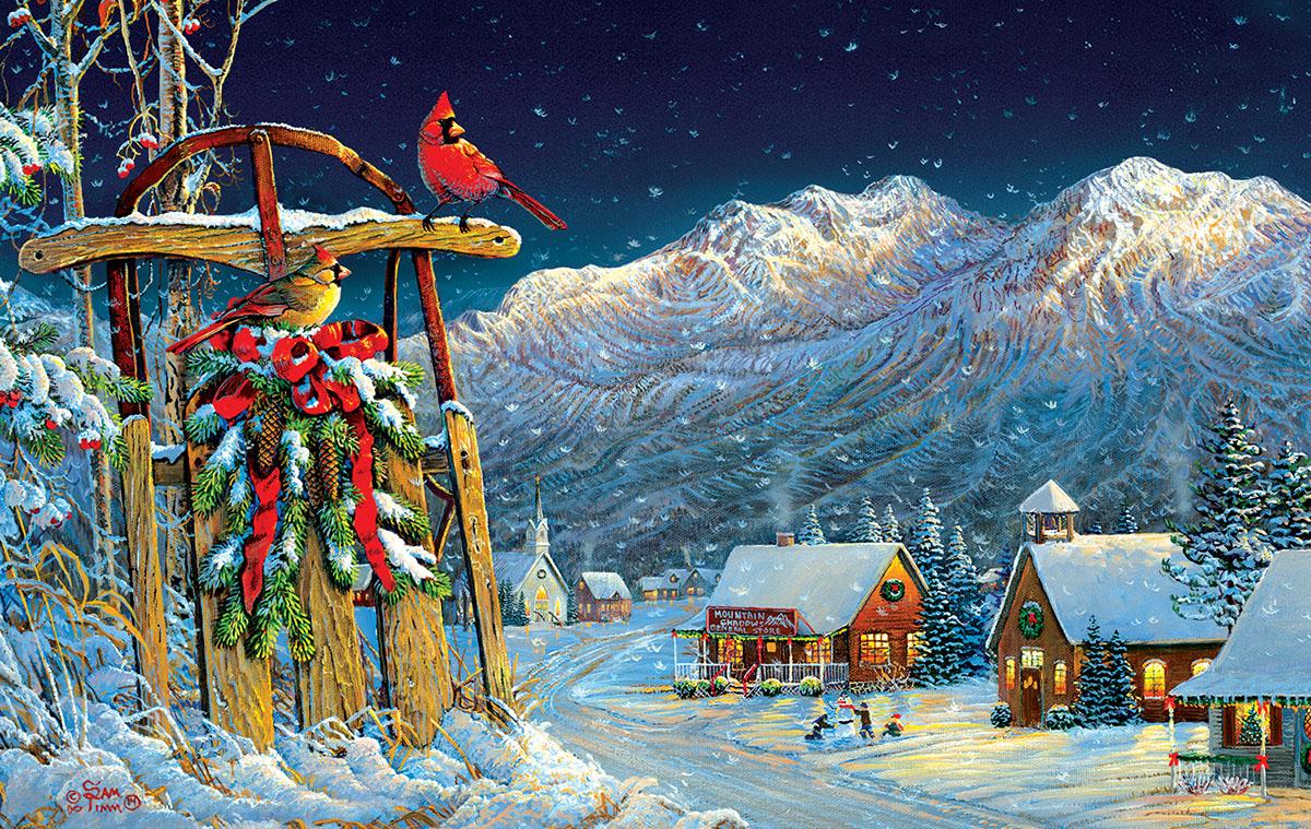sam-timm-cardinals-holiday