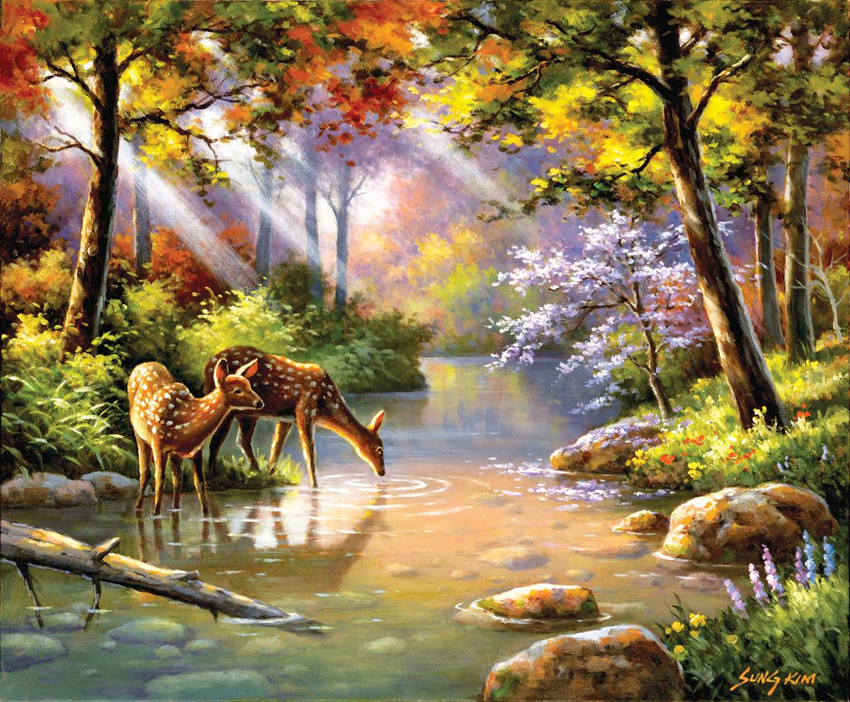 sung-kim-doe-re-me-creek