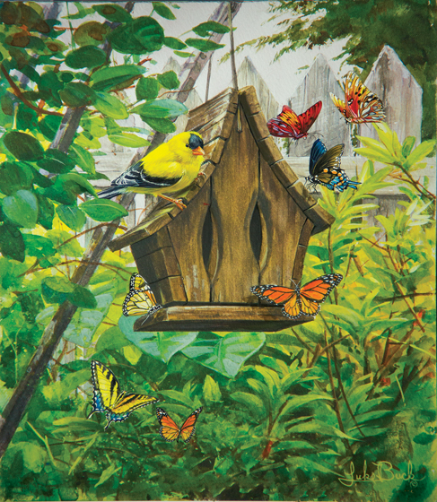 luke-buck-the-butterfly-house