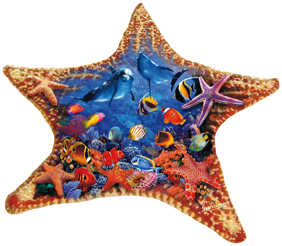 steve-sundram-starfish