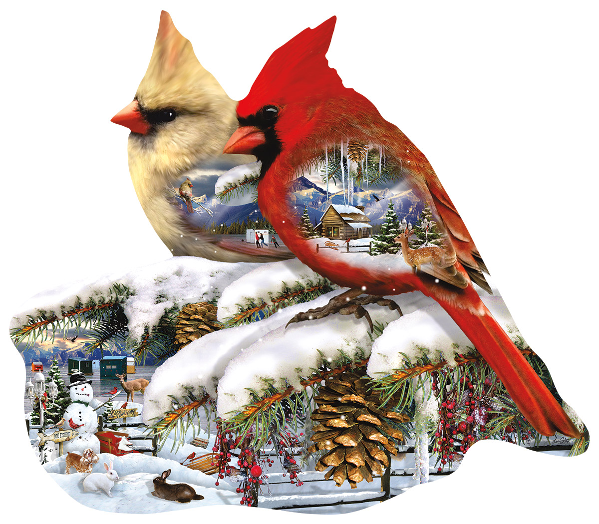 lori-schory-winter-cardinals