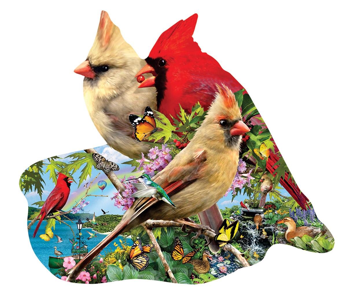 lori-schory-summer-cardinals