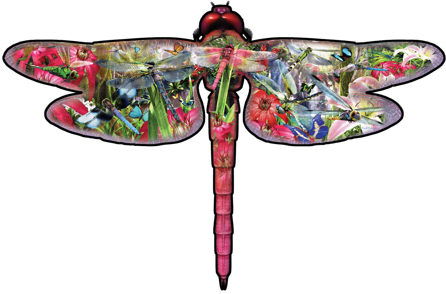 pieces-xxl-david-penfound-dragon-fly