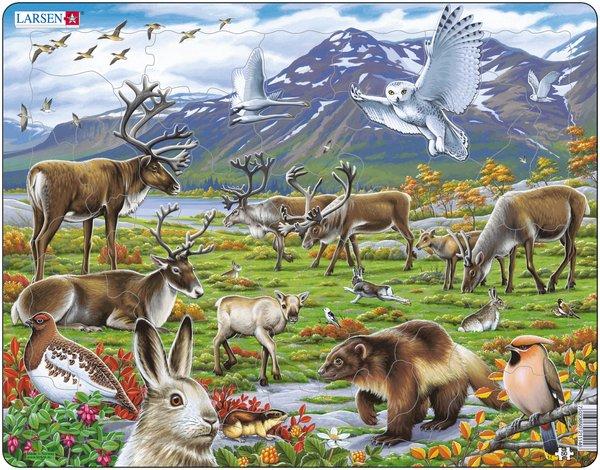 puzzle-cadre-les-animaux-de-laponie