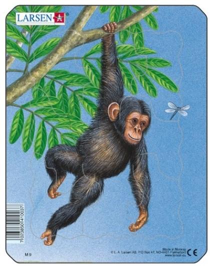puzzle-cadre-petit-singe