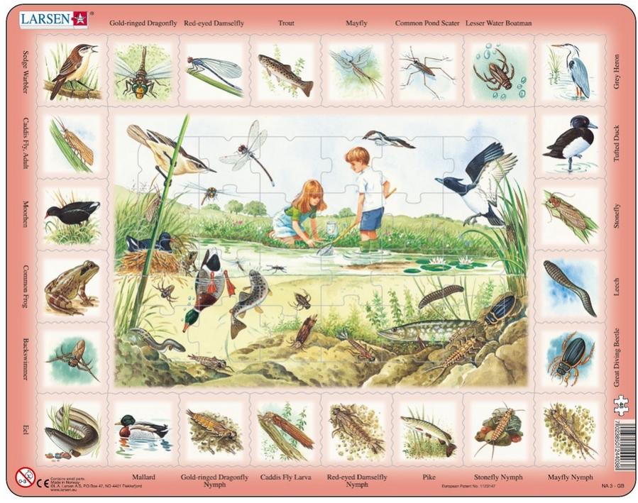 puzzle-cadre-apprendre-l-anglais-l-etang-en-anglais-