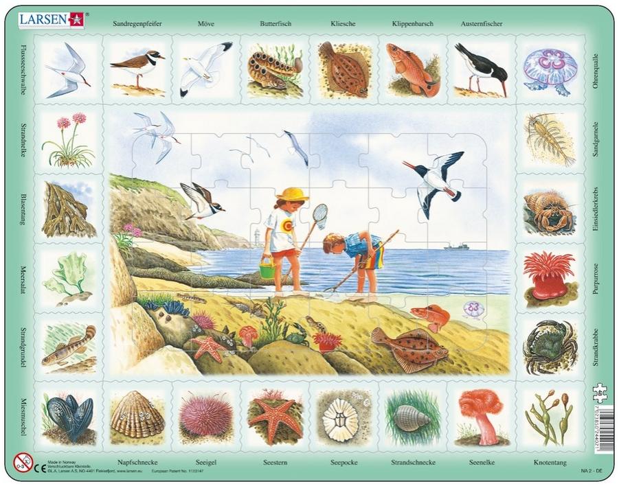 puzzle-cadre-apprendre-l-allemand-le-bord-de-mer-en-allemand-
