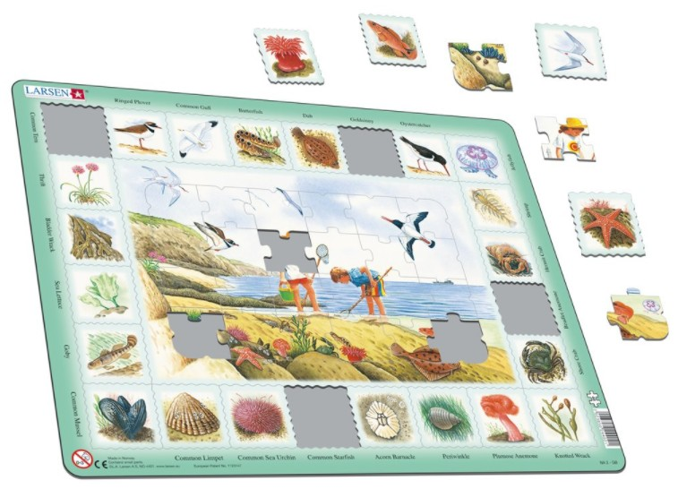 puzzle-cadre-au-bord-de-la-mer