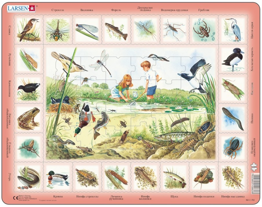 puzzle-cadre-animaux-de-l-etang-en-russe-
