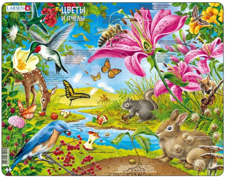 puzzle-cadre-les-fleurs-et-les-abeilles-en-russe-