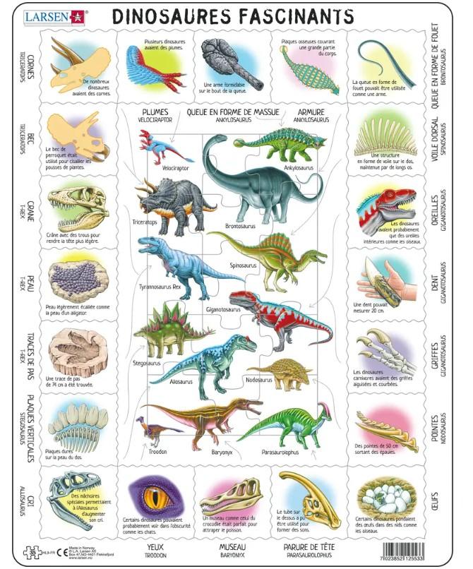 puzzle-cadre-dinosaures