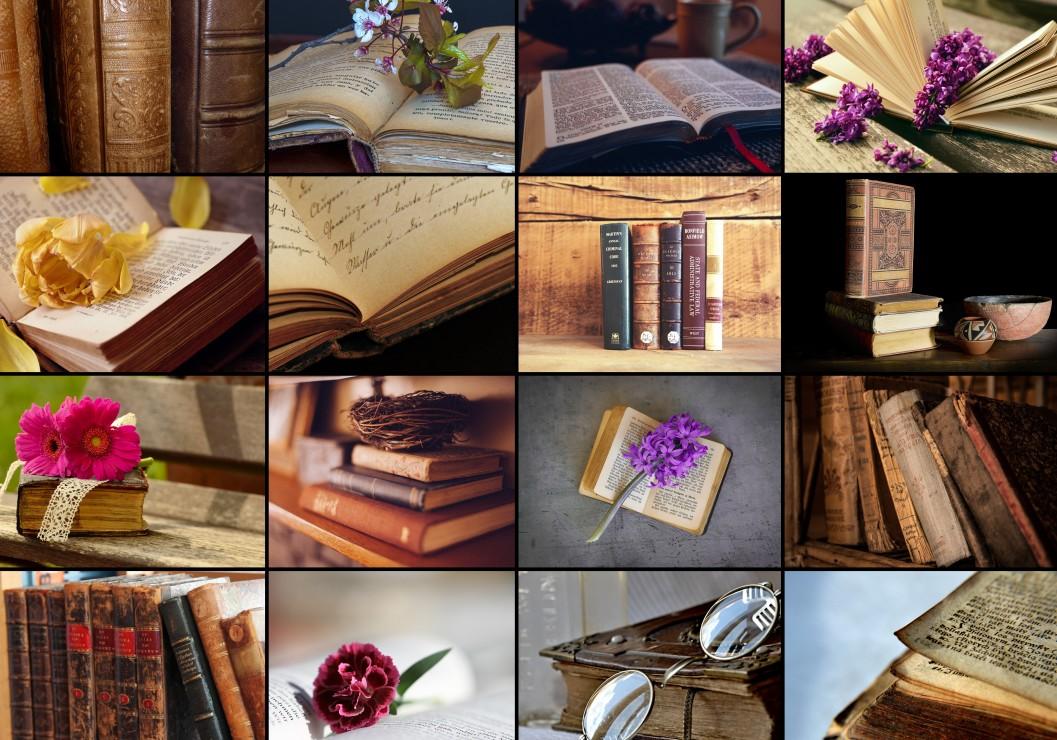 collage-livres