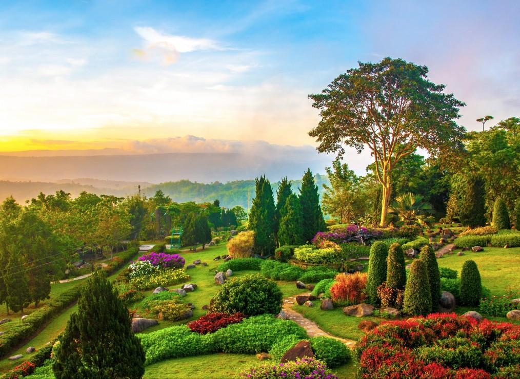 jardin-lumineux