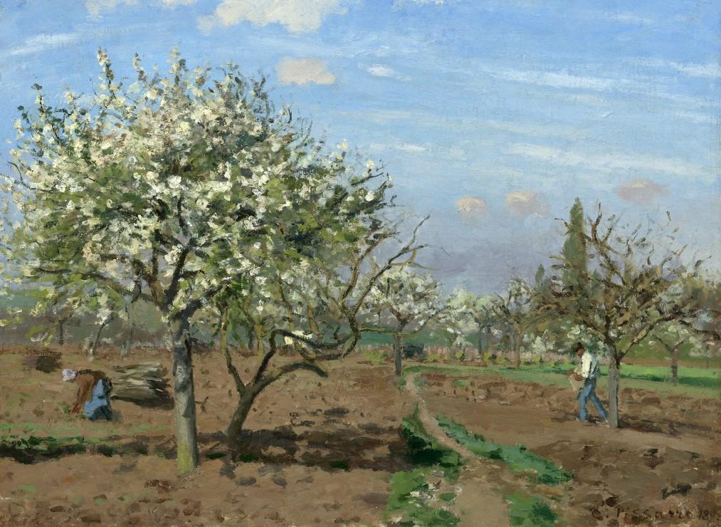 camille-pissarro-verger-en-fleurs-louveciennes-1872