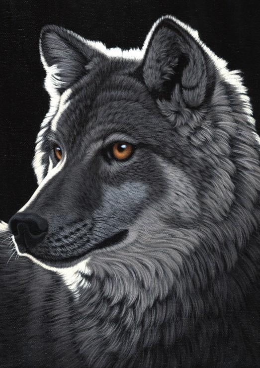 schim-schimmel-night-wolf
