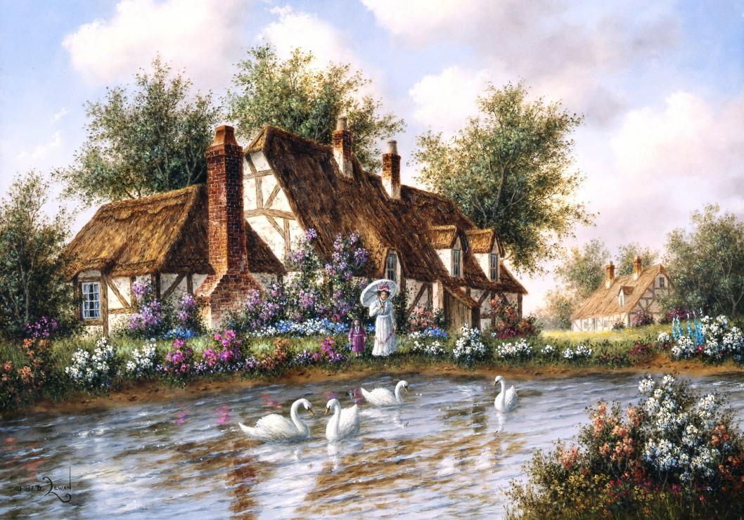 dennis-lewan-admiring-the-swans