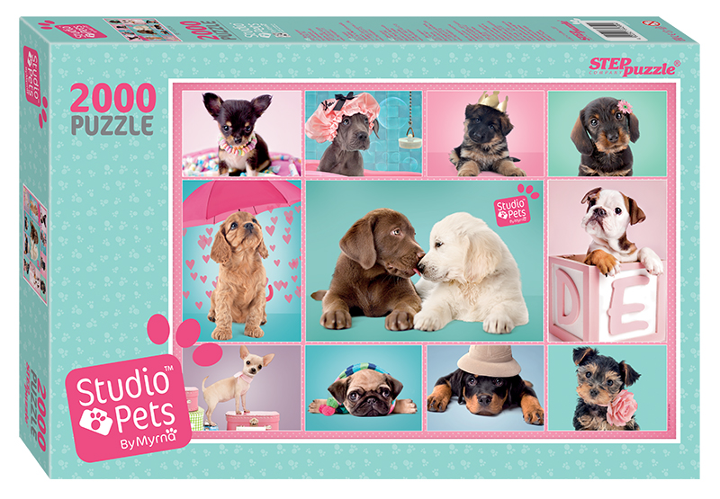 studio-pets