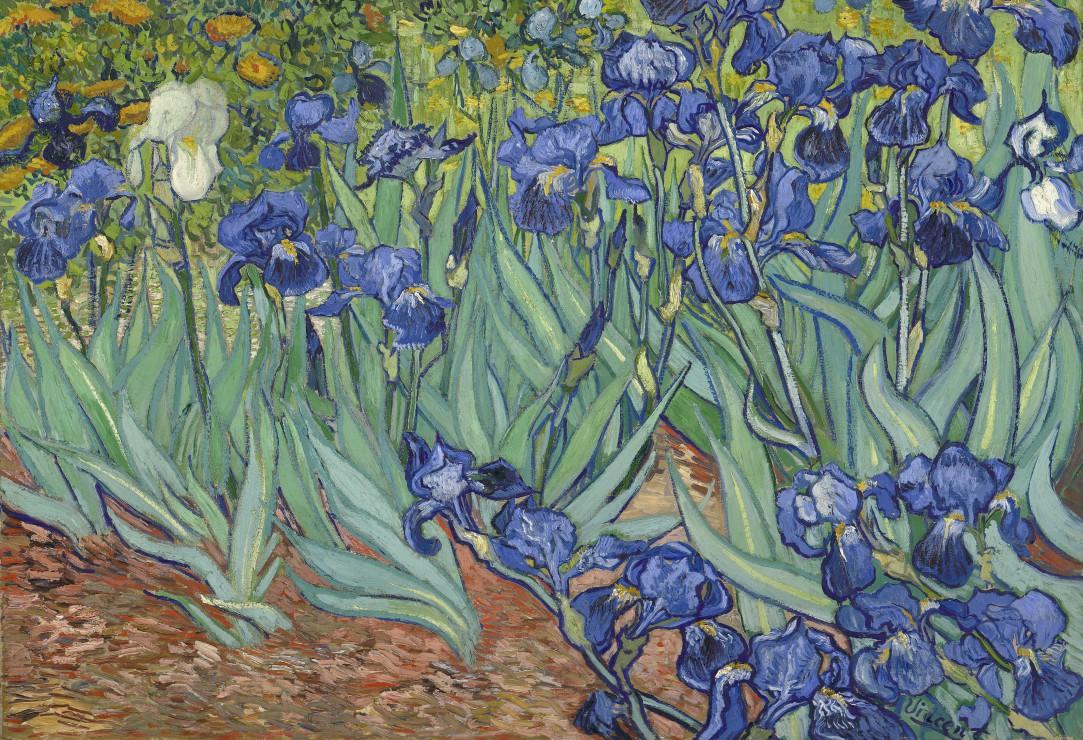 pieces-xxl-van-gogh-vincent-les-iris-1889