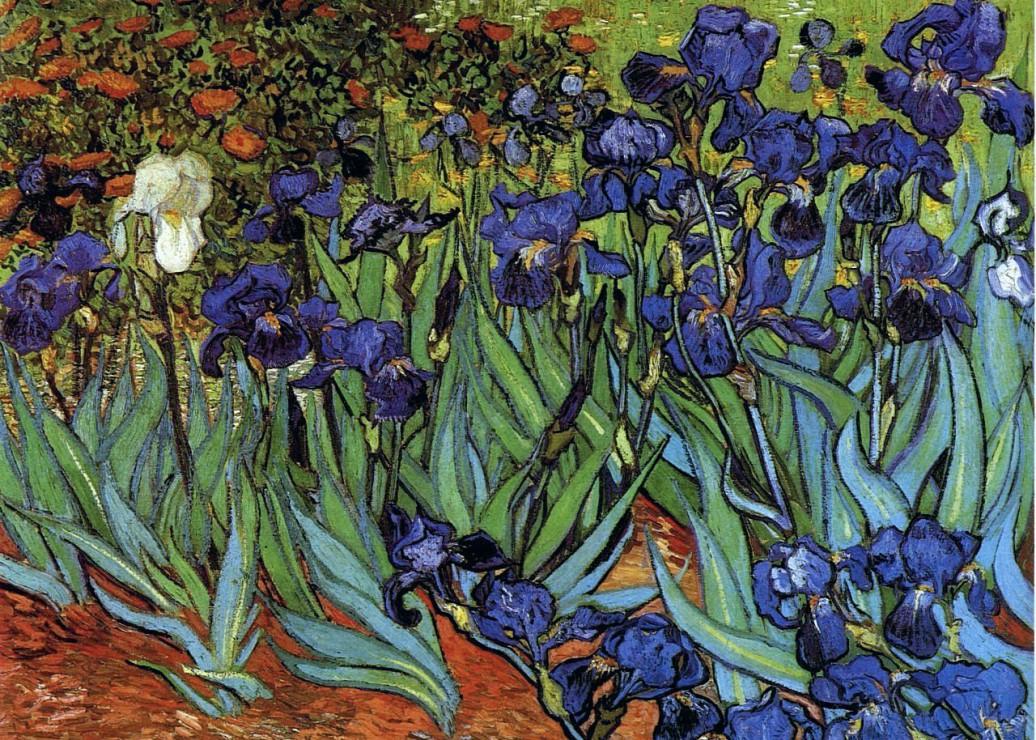 pieces-magnetiques-van-gogh-vincent-les-iris-1889