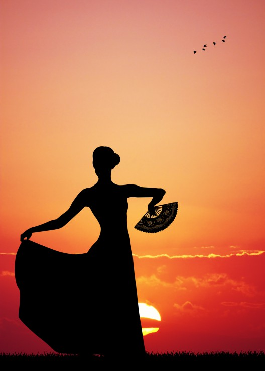 pieces-magnetiques-flamenco-at-sunset