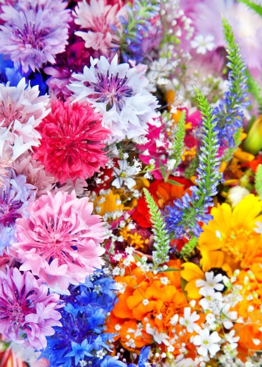 pieces-magnetiques-explosion-de-fleurs