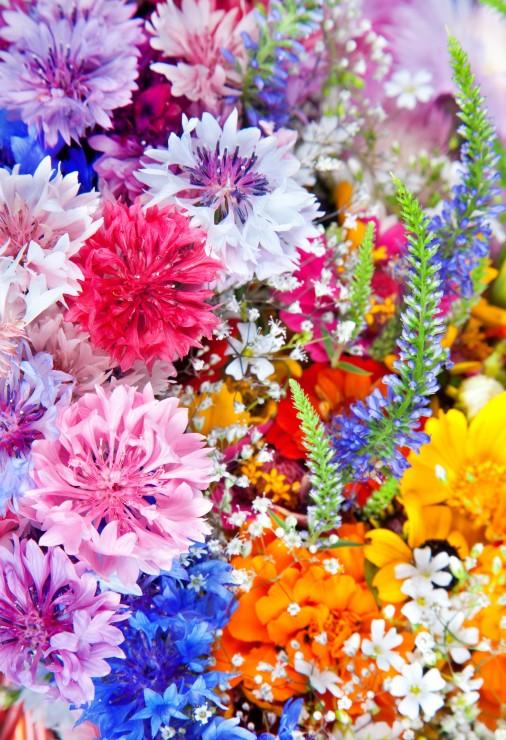 pieces-xxl-explosion-de-fleurs