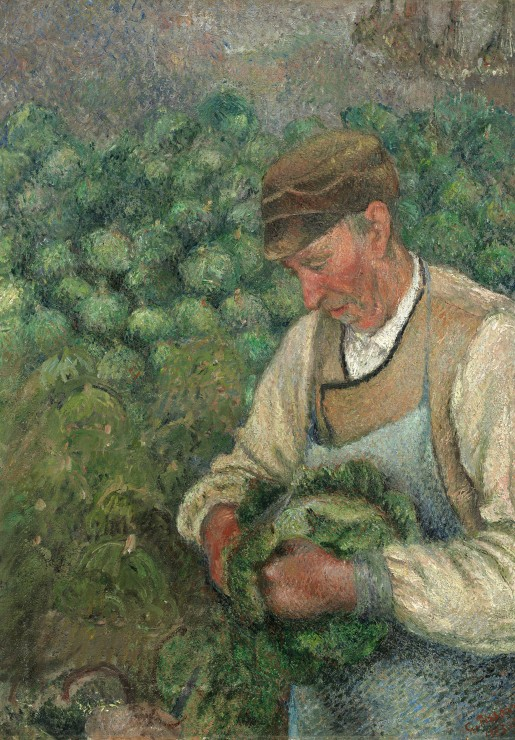 Camille Pissarro : Le Jardinier - Vieux Paysan avec Chou, 1883-1895